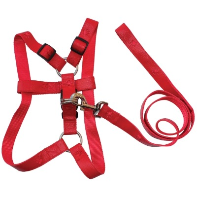 Image of Promotional Dog Harness and Lead Set