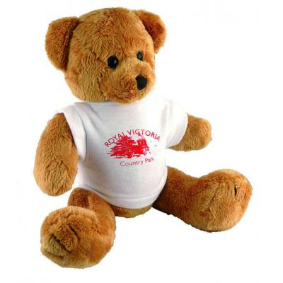 Image of Branded Teddy Bear with printed T Shirt