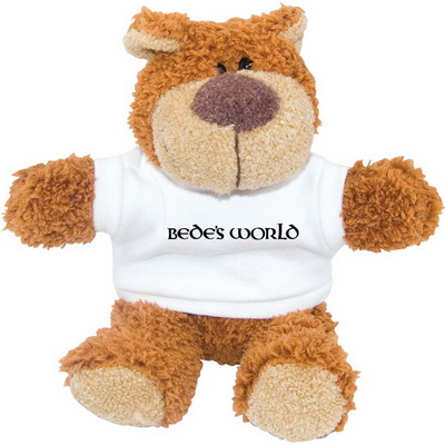 Image of Promotional Branded Teddy Bear and T Shirt