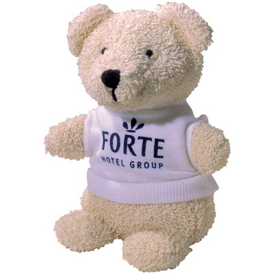 Image of Branded teddy Bear & T-Shirt