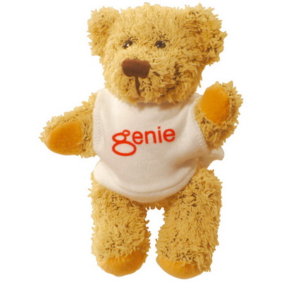 Image of Printed Teddy Bear with White T Shirt